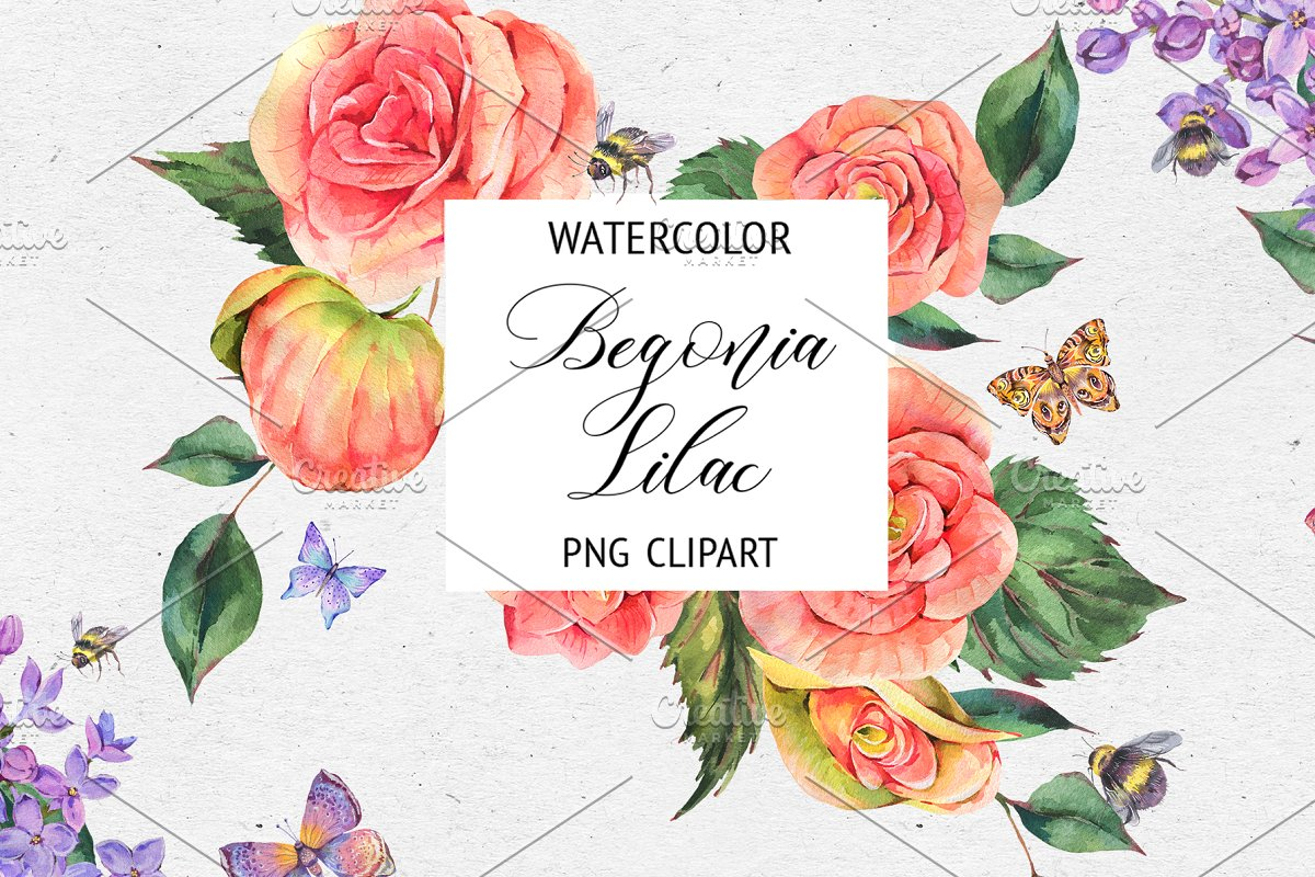 Watercolor Lilac&Begonia Clipart in Illustrations - product preview 8