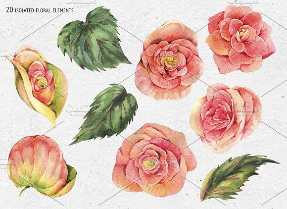 Watercolor Lilac&Begonia Clipart in Illustrations - product preview 6