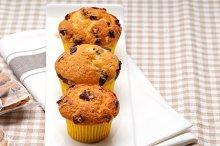 chocolate and raisins muffins  dessert cake 01.jpg