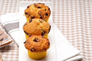 chocolate and raisins muffins  dessert cake 01.jpg