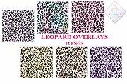 Leopard Pattern Overlay