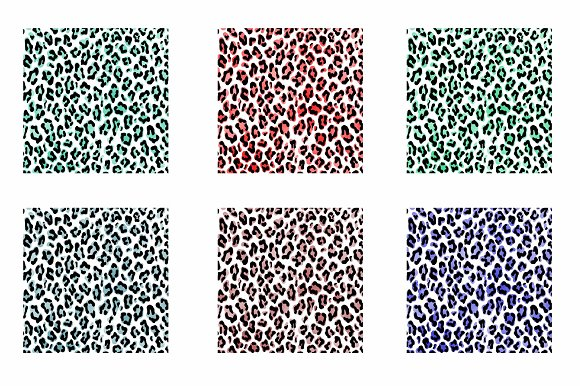 Leopard Pattern Overlay in Illustrations - product preview 2