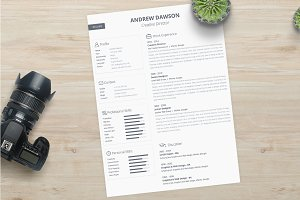 Greyline Resume