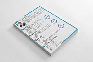 Clean Corporate Resume