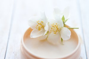 cream with  jasmine blossom on white