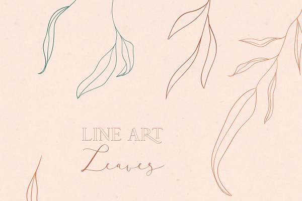 Line drawing leaves illustrations