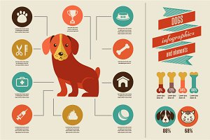 Dogs infographic & icon set