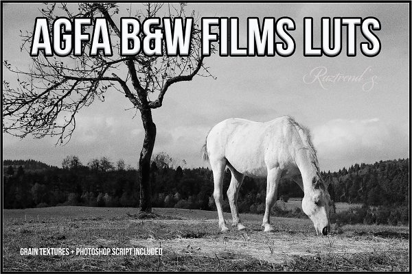 AGFA Black and White Film LUTs