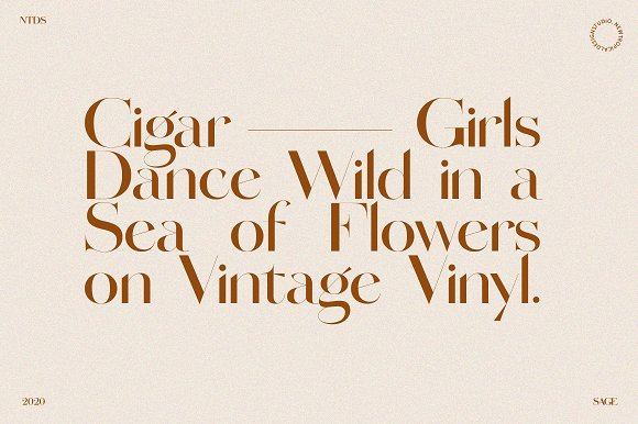 SAGE - Serif Font in Serif Fonts - product preview 2