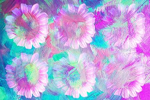 Pink Daisy Splash