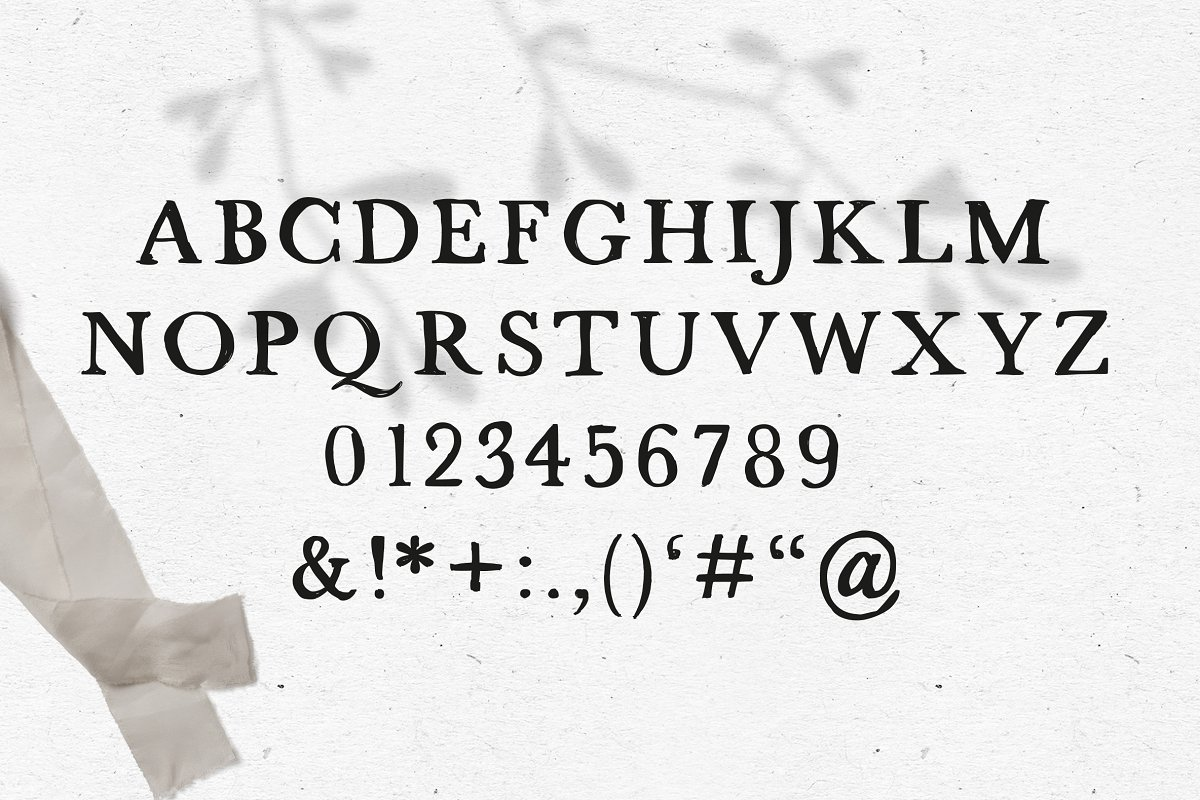FONT / STRANDLIEBE in Serif Fonts - product preview 2