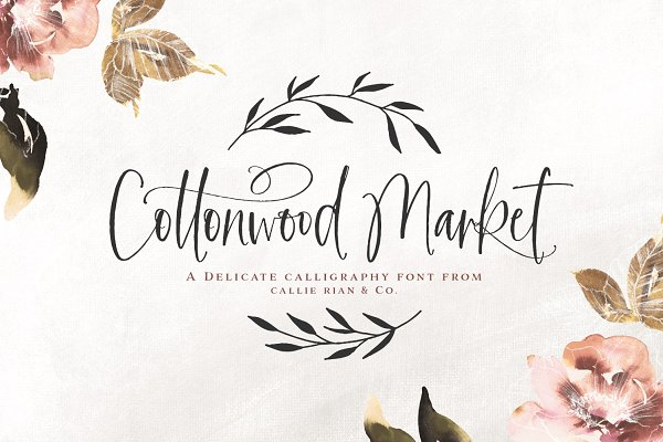 NEW! | Cottonwood Market Typeface