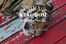 Animal Kingdom Photo Pack V1