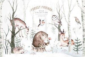 Scandinavian forest friends