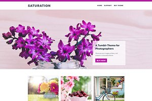 Saturation Tumblr Theme