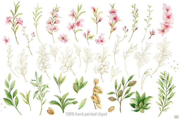 Watercolor Flowers Of Almond.