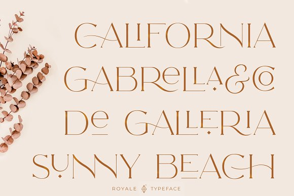 Royale Luxurious Typeface + LOGOS in Serif Fonts - product preview 19