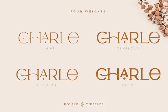 Royale Luxurious Typeface + LOGOS in Serif Fonts - product preview 21