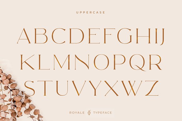 Royale Luxurious Typeface + LOGOS in Serif Fonts - product preview 22