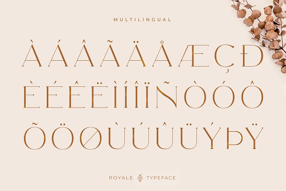 Royale Luxurious Typeface + LOGOS in Serif Fonts - product preview 23