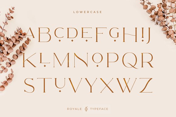 Royale Luxurious Typeface + LOGOS in Serif Fonts - product preview 24