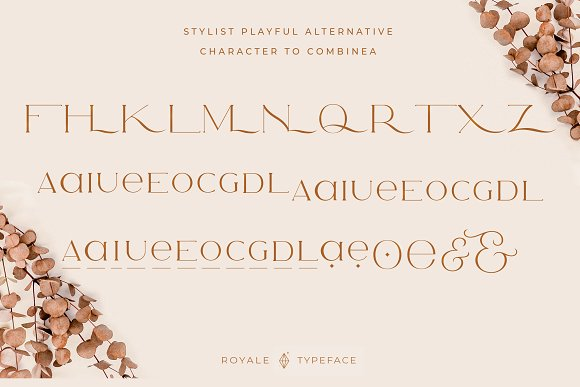 Royale Luxurious Typeface + LOGOS in Serif Fonts - product preview 25