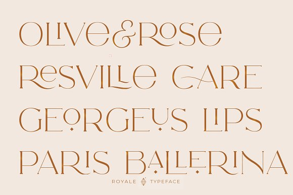 Royale Luxurious Typeface + LOGOS in Serif Fonts - product preview 27