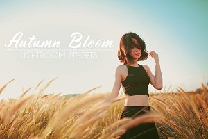 Autumn Bloom Lightroom Presets