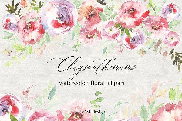 Chrysanthemums Watercolor Clip Art