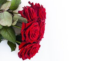 Red roses bouquet white background