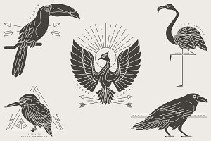 Vintage bird labels