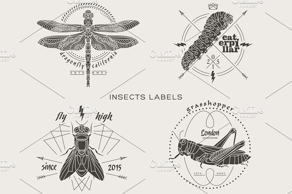 Vintage insect labels ~ Logo Templates ~ Creative Market
