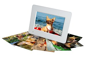 White digital photo frame with photo