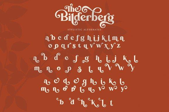 Bilderberg   Luxury Bold Serif in Serif Fonts - product preview 17