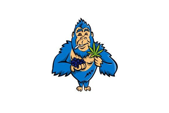 Gorilla Holding Blueberry Cannabis Pre Designed Illustrator
