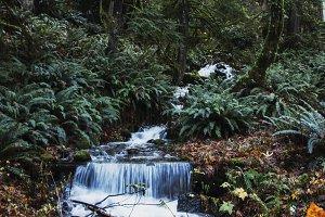 Fall Waterfall 1