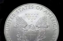 american silver eagle dollar  2.jpg