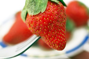 fresh strawberrys over white 10.jpg