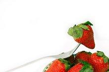 fresh strawberrys over white 05.jpg