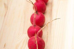 fresh radishes  05.jpg