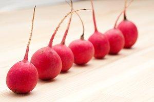 fresh radishes  10.jpg