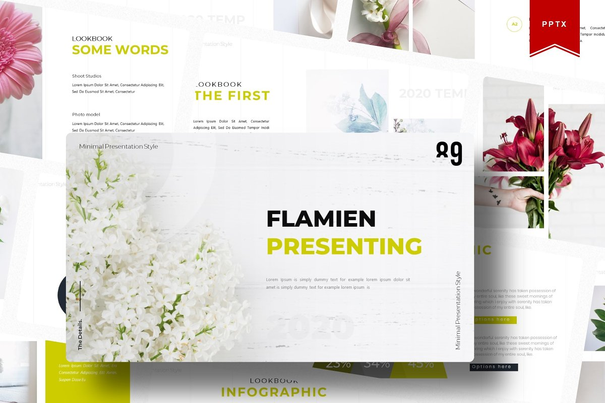 Flamien | Powerpoint Template