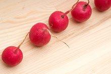 fresh radishes  09.jpg