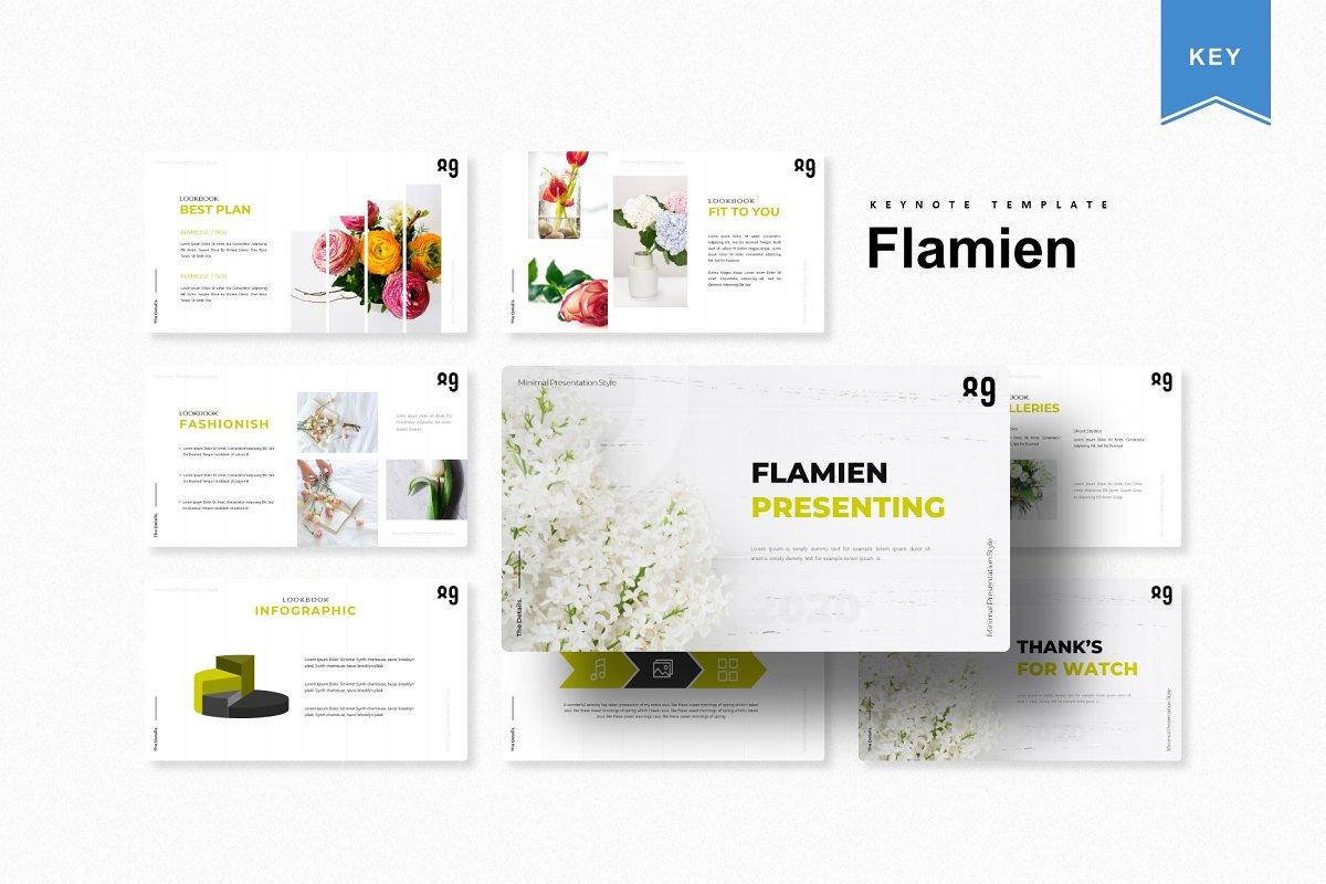 Flamien | Keynote Template