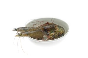 fresh raw shrimps 4.jpg