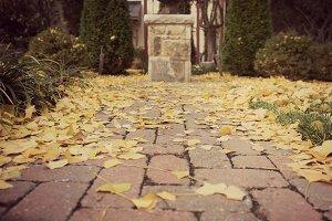 Yellow and Brick Road