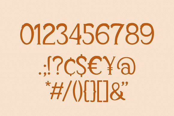 Xylosma Serif Font in Serif Fonts - product preview 10