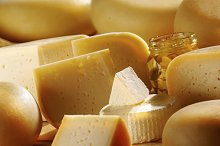 Various types of cheese.jpg