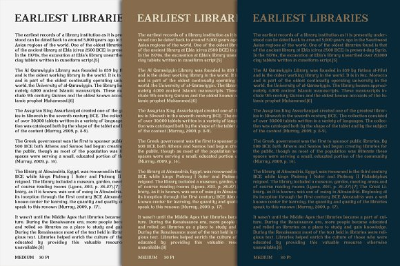 Librarium - Serif Font Family in Serif Fonts - product preview 5