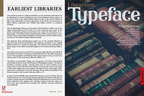 Librarium - Serif Font Family in Serif Fonts - product preview 7